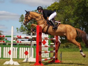 Damian griffin and dutell winners of the leinster summer tour at ballivor horse show 14/6/15 photo by Laurence dunne Jumpinaction.net