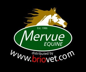 Mervue equine Briovet 2