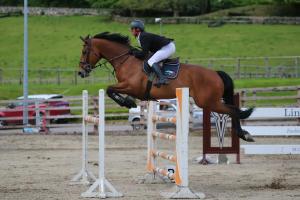 declin mcevoy winner at ravensdale mervue equine lst 2016